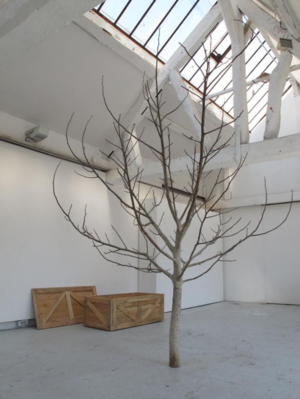 Mi-bois, 2014