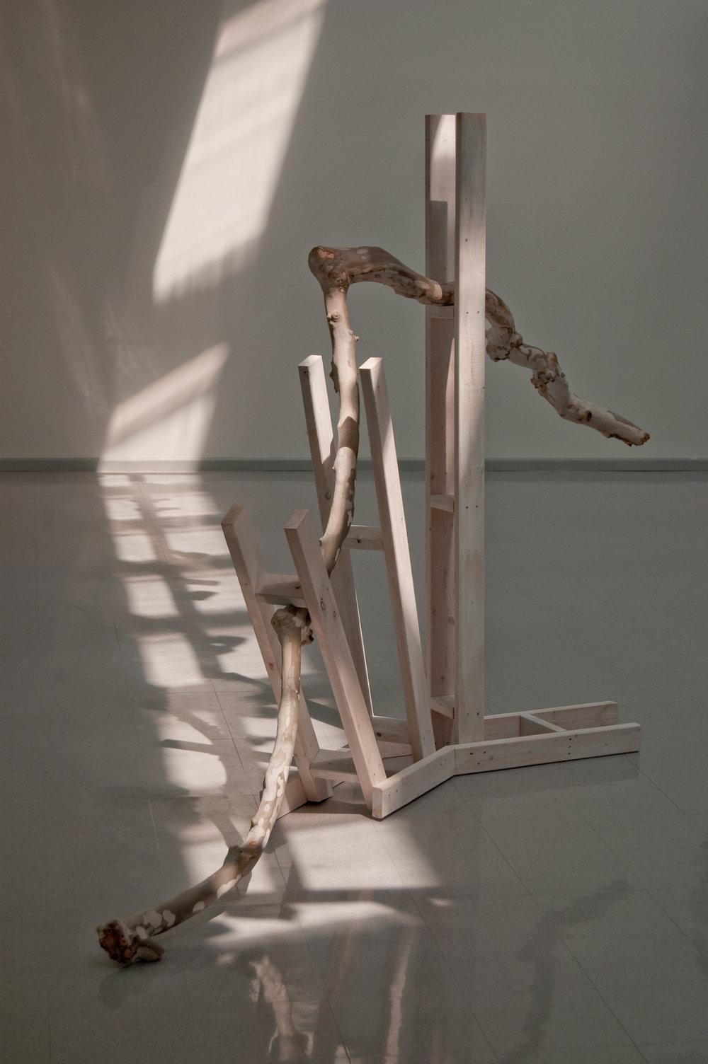 Heather Brammeier,  Sideways