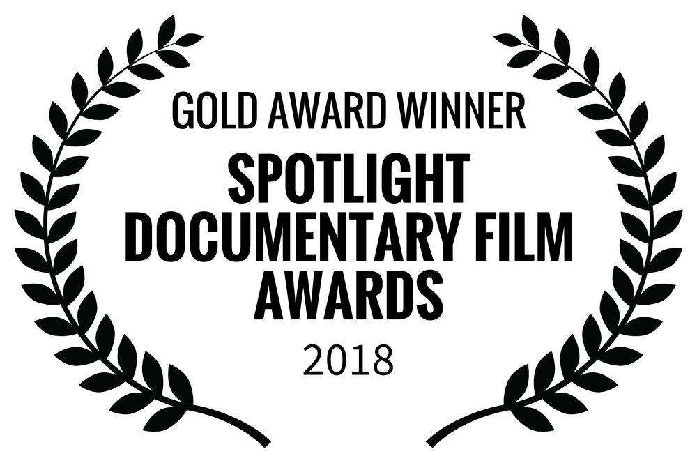 Splotlight Documentary Awards 2018.jpg