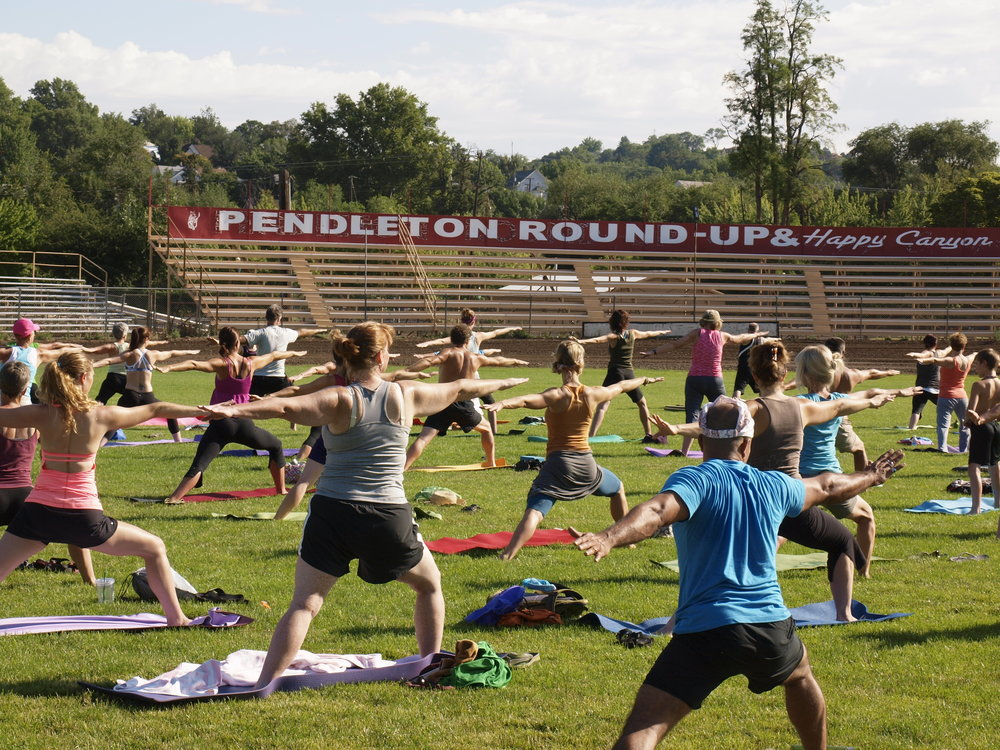 Yoga Round Up