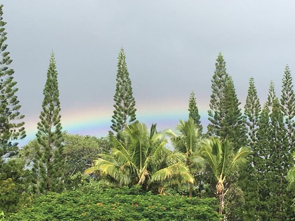 Wellness Wave Hawaii Retreat at Kalani