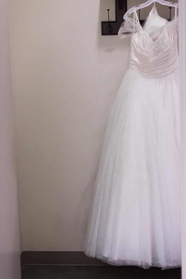Cinderella Disney Dress