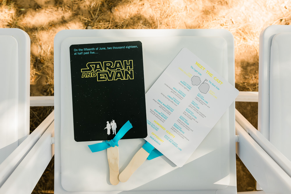 Star Wars Themed Decor