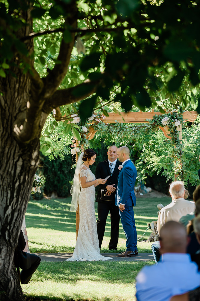 Aged Tree Providing Shade for an Outdoor Summer Wedding in Modesto