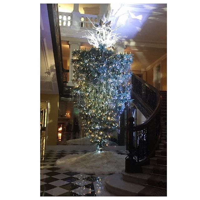 Feeling the Christmas spirit with this magical Christmas tree. . #Tricouni #LuxuryThatPerforms #TricouniMoments #christmastree #london