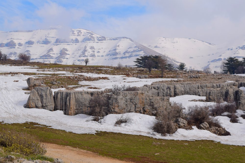 Tannourine  mountains