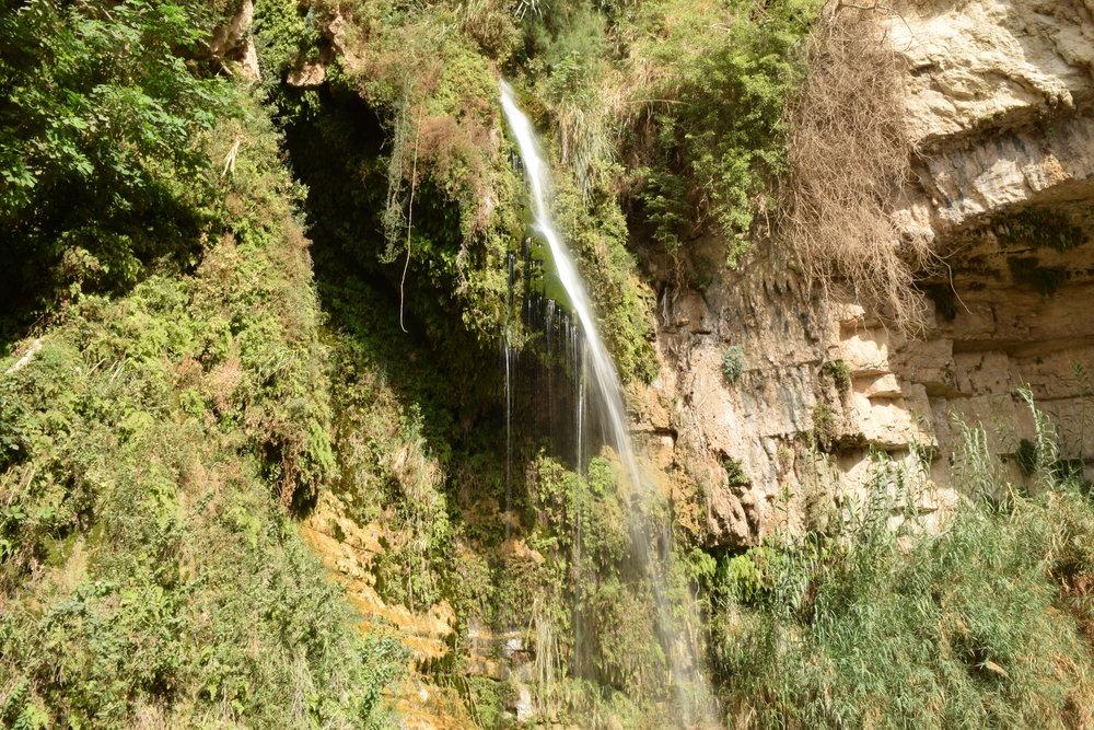 Waterfall in Ein Gedi