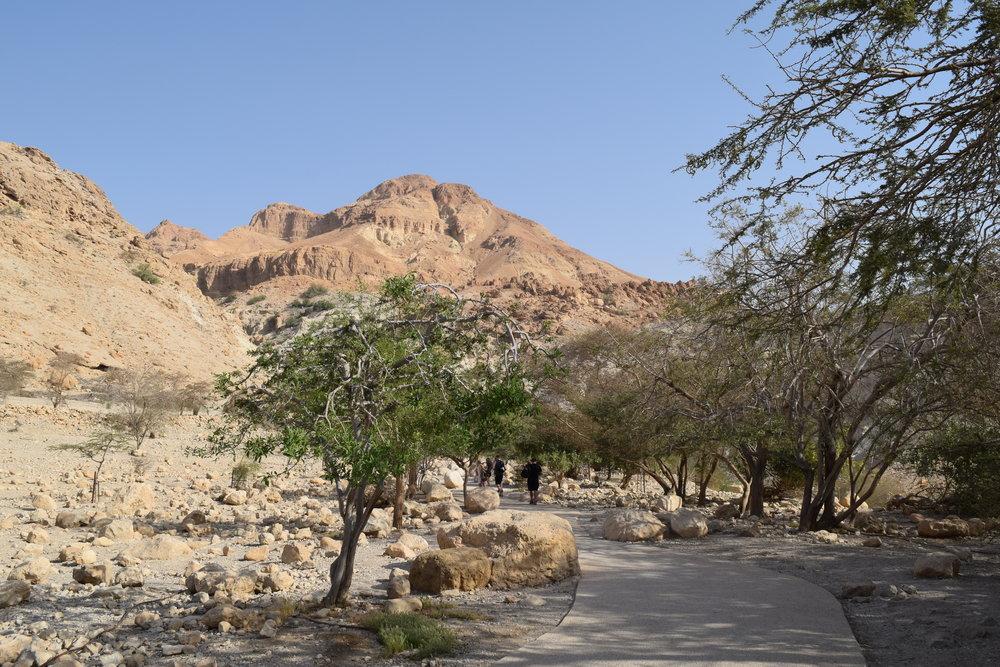 La entrada a Ein Gedi
