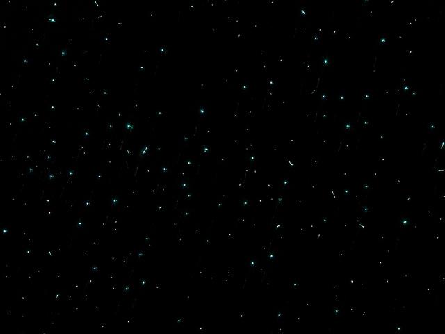 No, no es el cielo nocturno, son los gusanos haciendo sus cosas