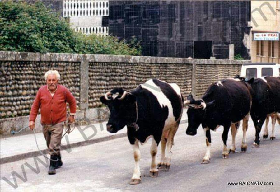 """""""0 cabeco"""" y sus vacas (foto de https://valminortv.com/"""