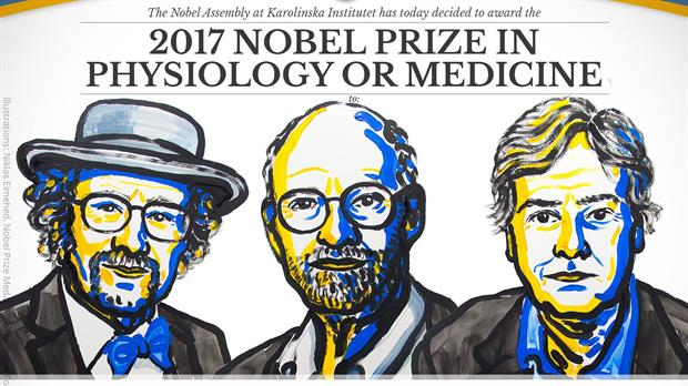 premios-nobel-2017-2542857w620.jpg