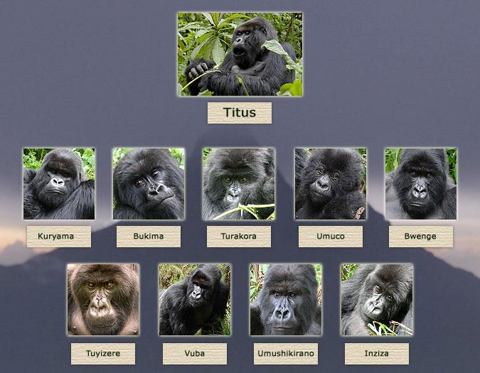 Árbol familiar de Titus