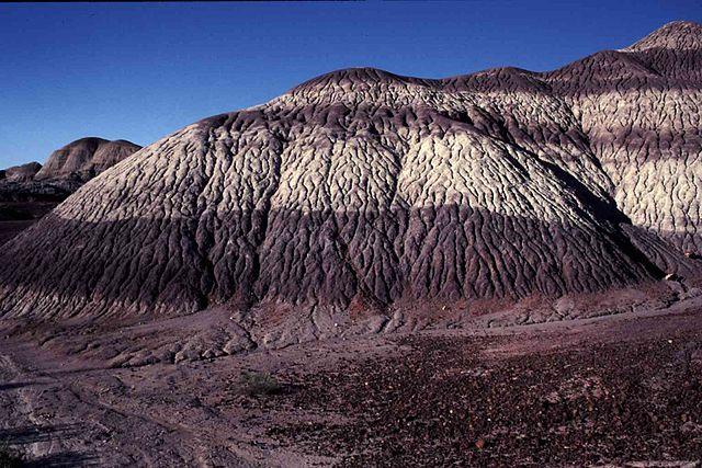 Extractos del Triásico en el desierto de Arizona