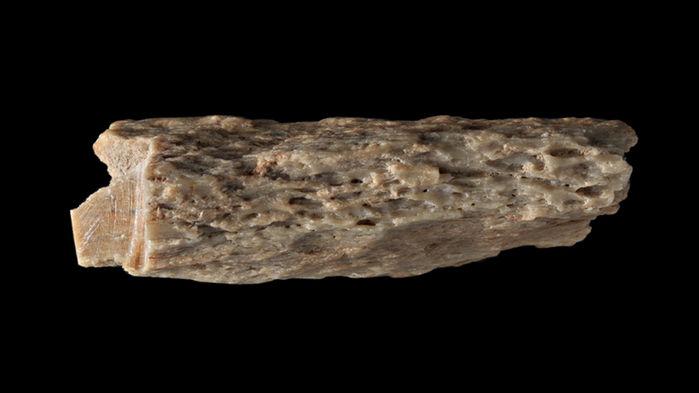 Fragmento óseo
