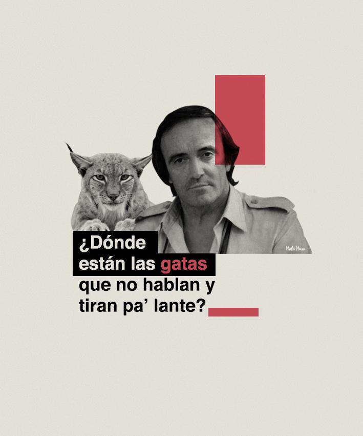 reggaeton-ilustrado-7.jpg