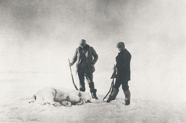 Cazando un oso polar