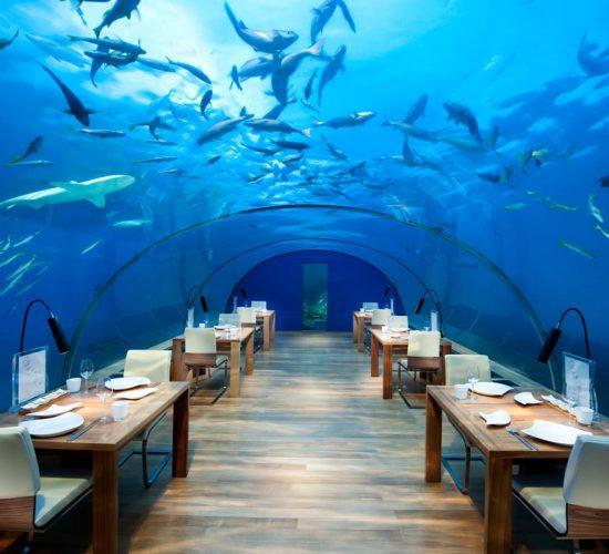 ithaa-underwater-restaurant-1064x800-550x500.jpg