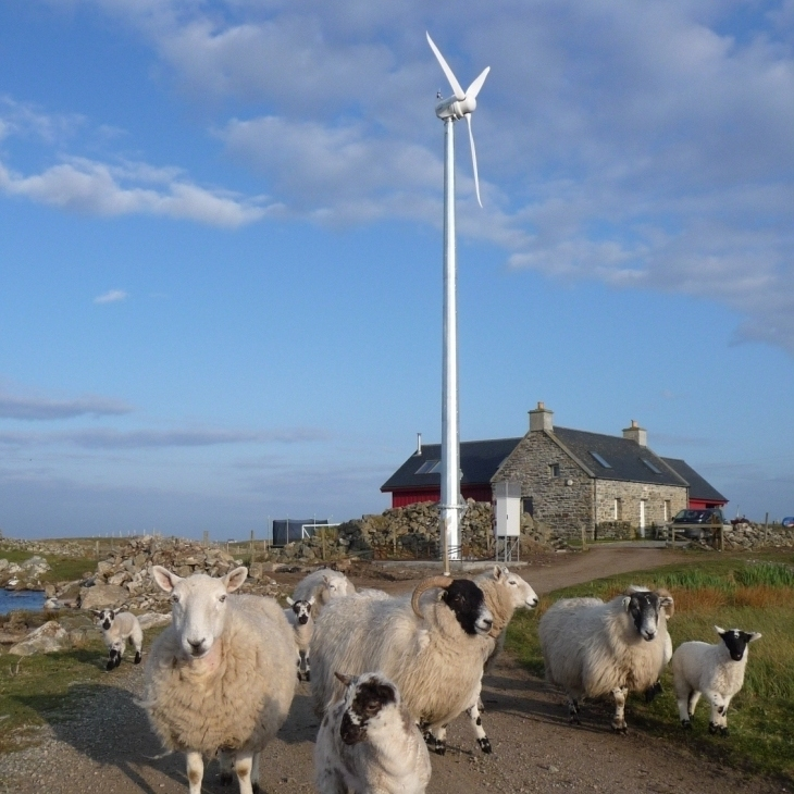 turbine and sheep copyofp1060856comp - Copy.jpg