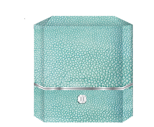 Precious cargo - This box, designed to carry engagement and high jewelry rings, reflects luxury and the Tiffany brand in it's blue shagreen covering, gleaming metal and bejeweled closure.