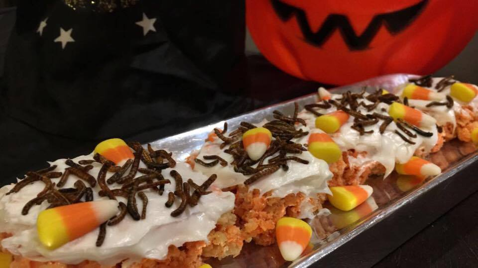 mealworm crispy treats.jpg