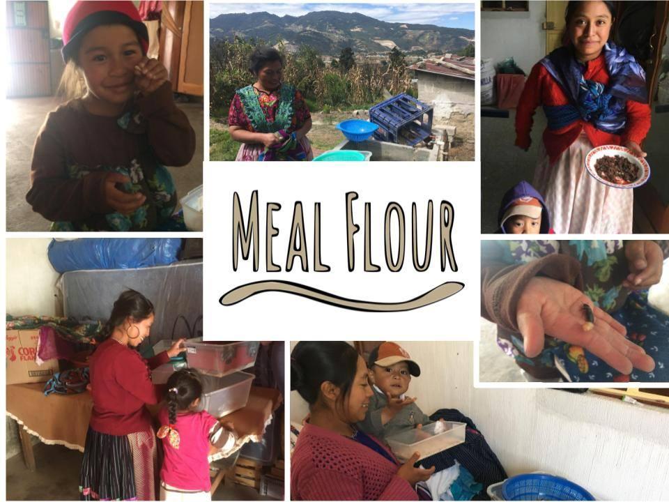MealFlour Crowdfunding.jpg