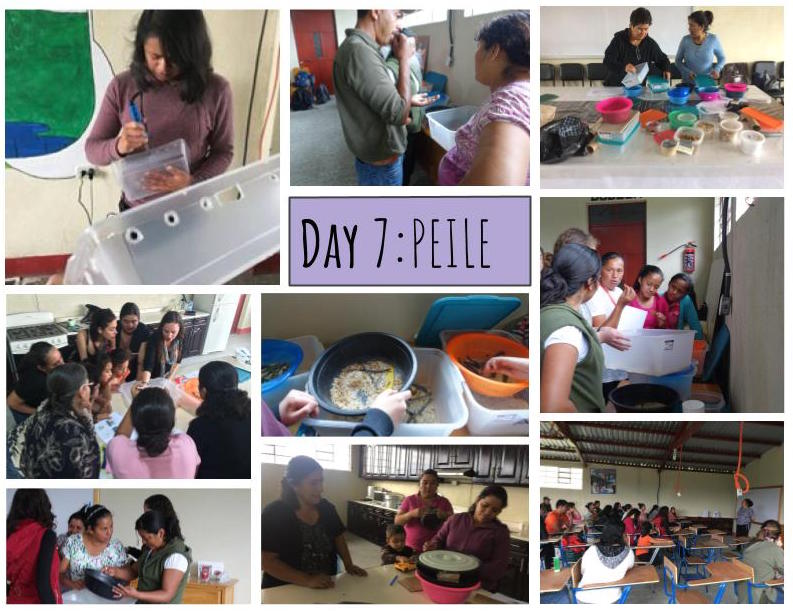 In 2016, MealFlour started to work with the organization, PEILE. This year, we built on this partnership by expanding to a second region of Guatemala, Huehuetenango (Huehue), and starting a locally lead mealworm farm experiment at their center. In Huehue, we worked with PEILE staff, teaching them the program and how to train other members of the community. The newly trained leaders hosted an open house with members of the community in Huehue, Malacatancito. Back in Xela, 7 women have taken the lead on a farm experiment, varying mealworm food with locally sourced grains. Look out for results to come. Only 6 more days to donate as part of our '12 Days of MealFlour', where all contributions are TRIPLED!