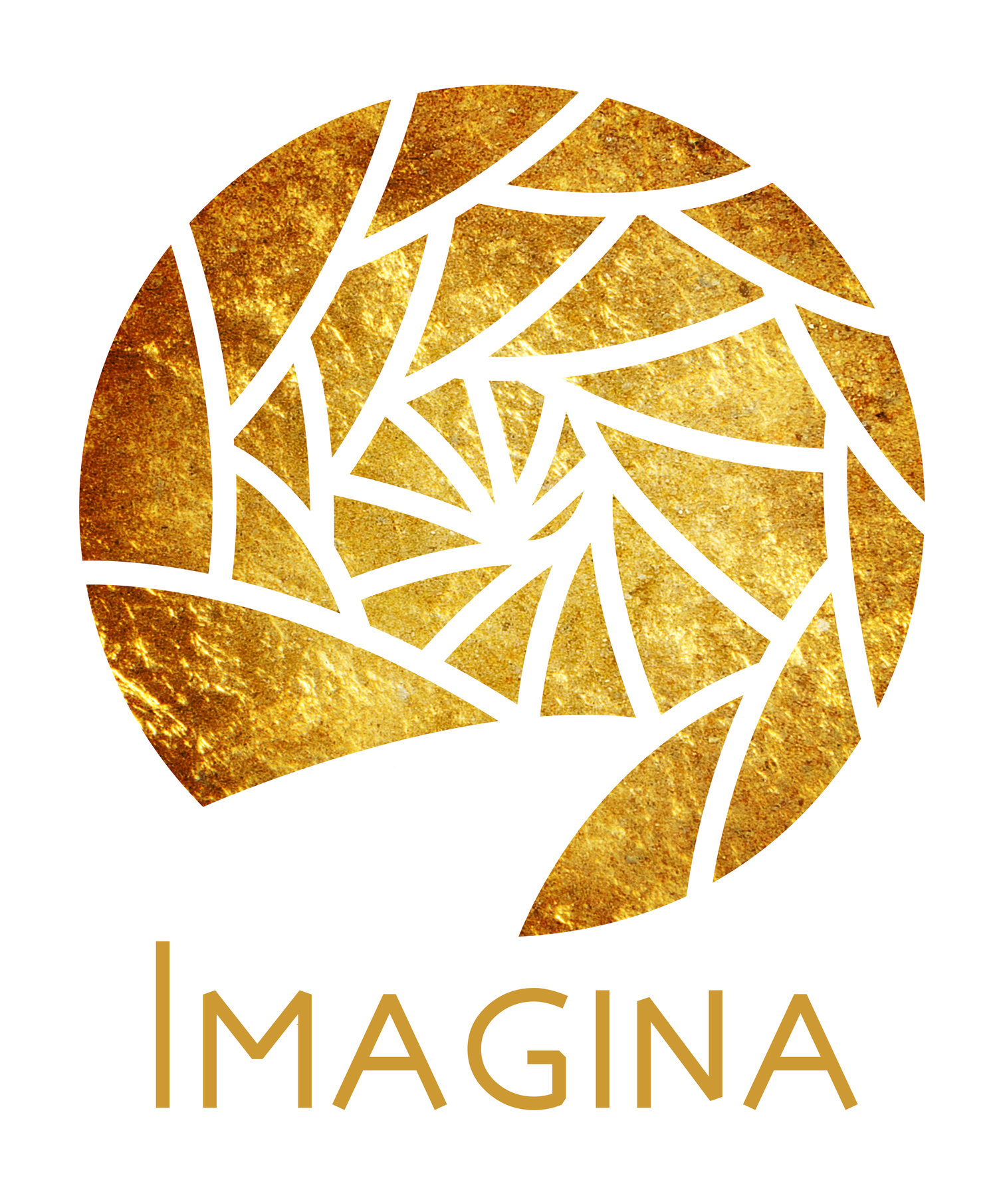 Imagina Consulting, Inc.