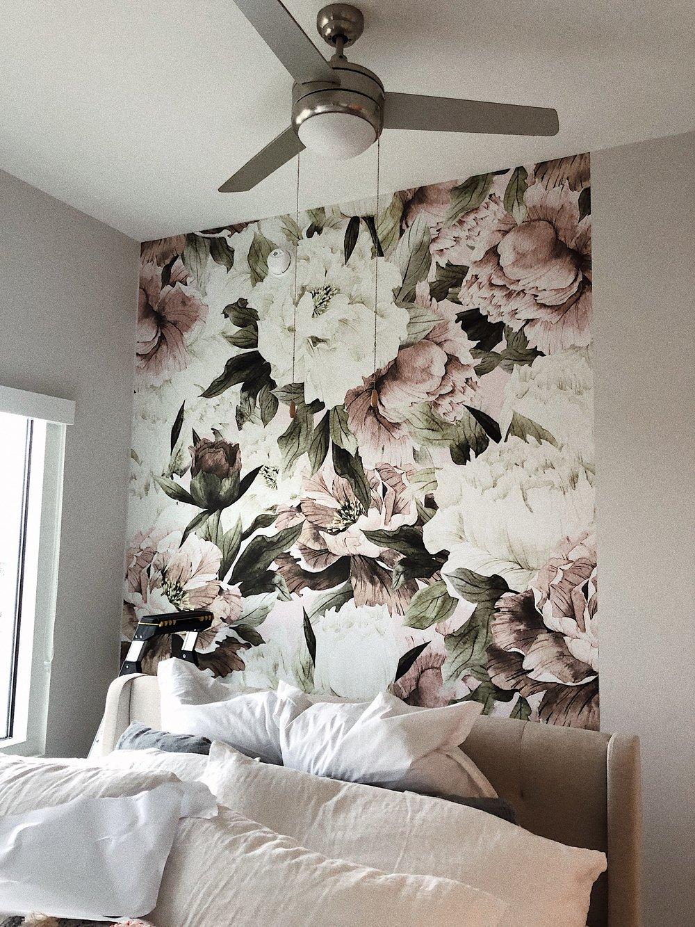 peony wallpaper.JPG