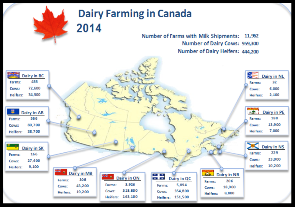 Reference: Canadian Dairy Information Centre. Available at: http://www.dairyinfo.gc.ca/index_e.php?s1=dff-fcil&s2=farm-ferme&s3=nb