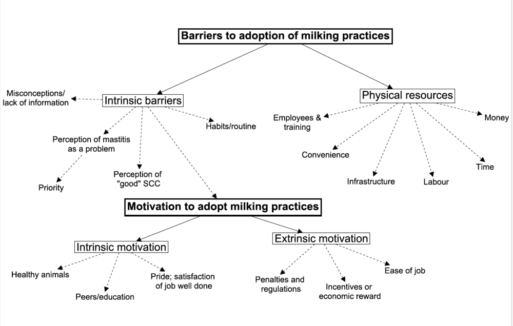 A thematic map developed by Ms. Belage to describe the barriers and motivators influencing the adoption of recommended milking practices.