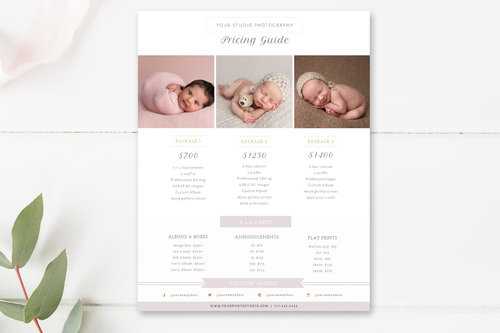 Newborn Photographer Pricing Guide Template
