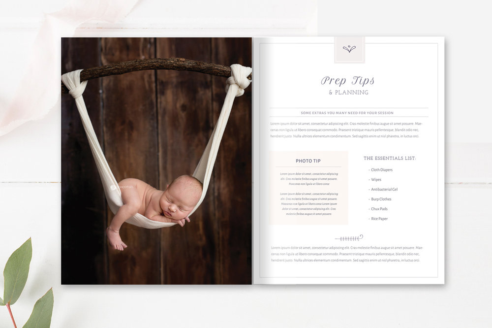 newborn photographer welcome magazine template  - by stephanie design