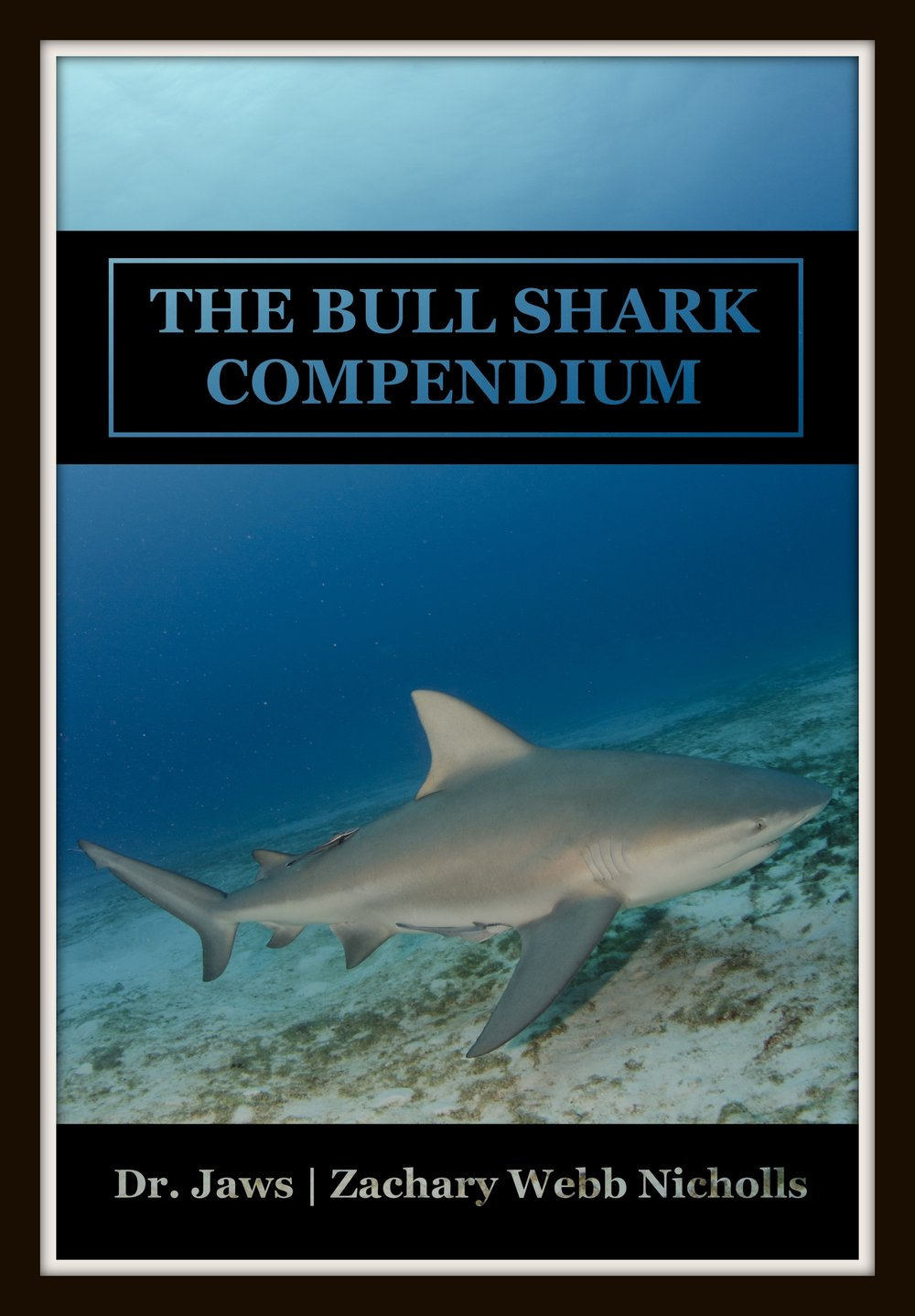 The Bull Shark Compendium