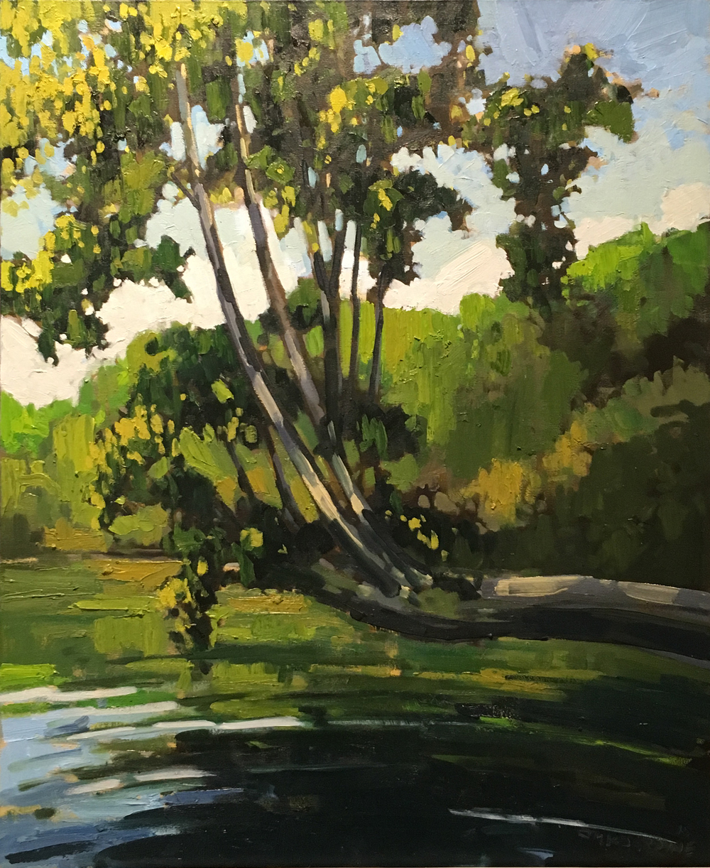 SOLD || Maple over the Distress River by Jamie Jardine