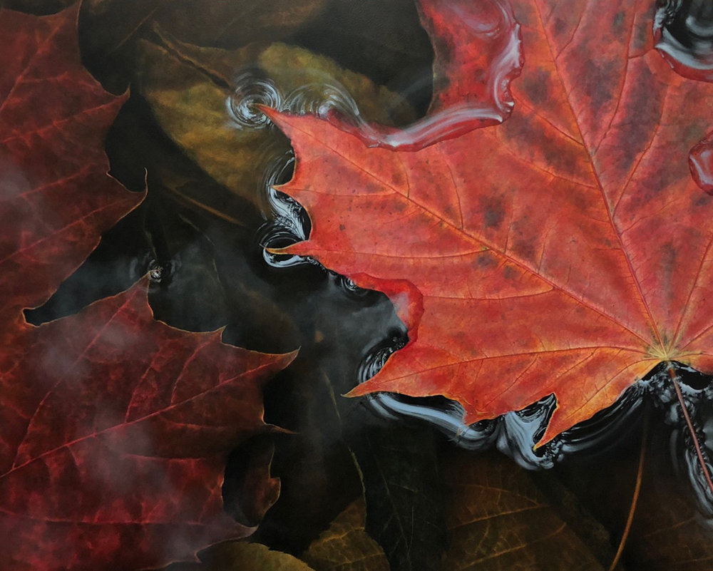 SOLD || Leaf in Water 3 by Craig Guthrie