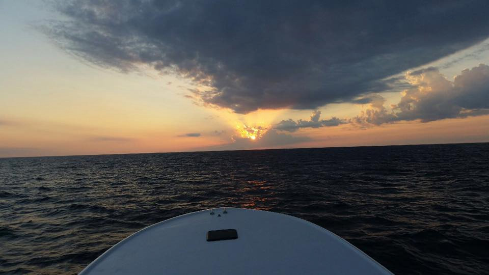 bill-fishing--high-return-sportfishing.jpg