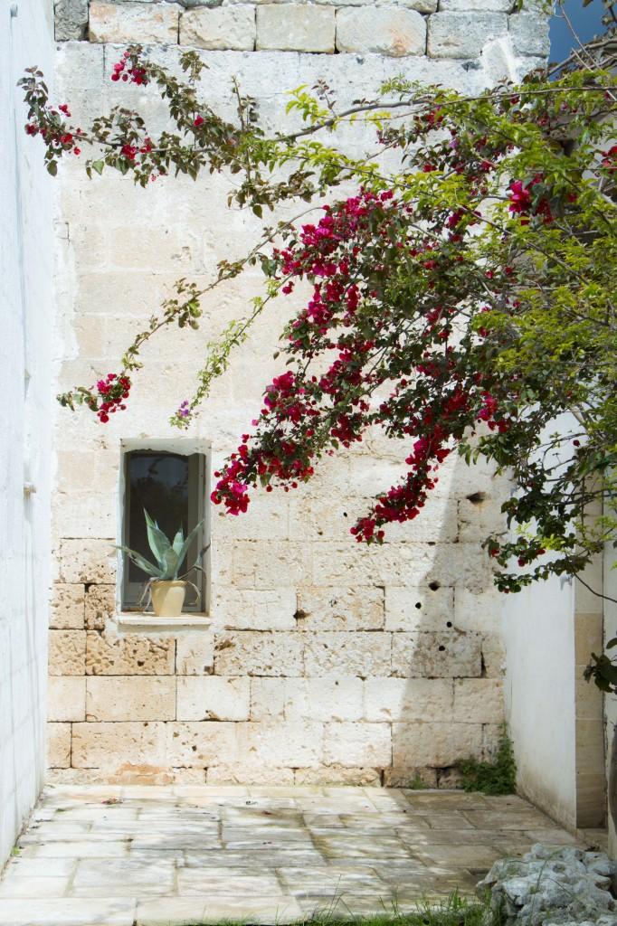 Masseria potenti_giardino_esterni