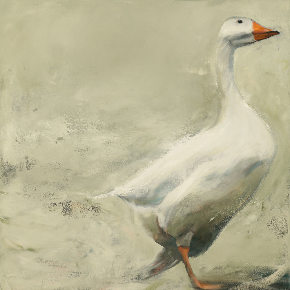 Goose, 2017, oil on canvas, 40 x 40 in.