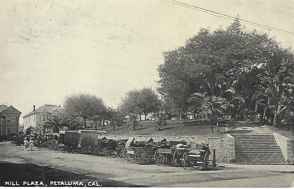 Undated Hill Plaza postcard, likely dating to the early 1900s since the Burdell-donated palm trees are in place.