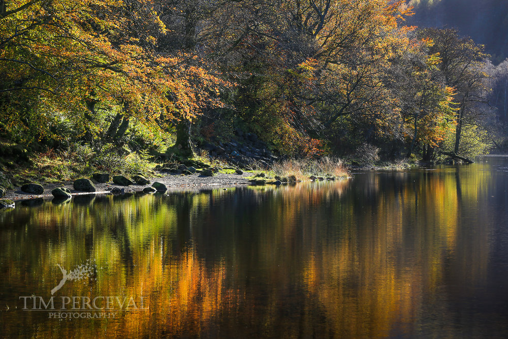 Autumn dream, Loch Lubnaig