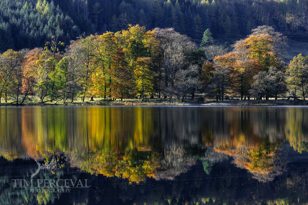 Autumn reflections on the pristine calm of Loch Lubnaig