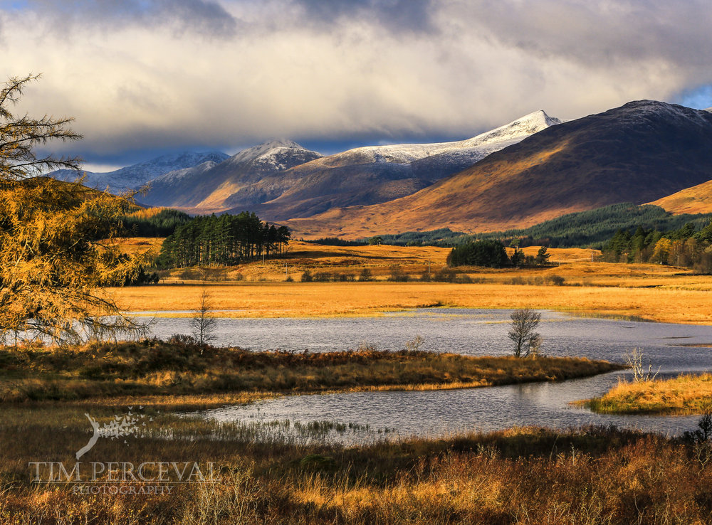 Black Mount, Bridge of Orchy