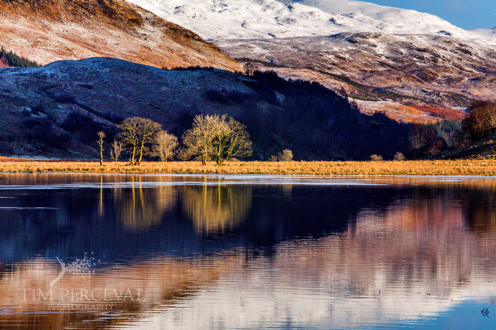 Twin trees over Loch Dochart at Sunrise