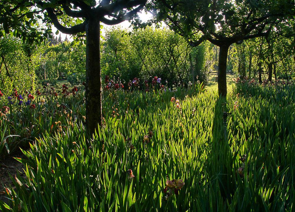Le Jardin de l'Alchémie, Eygalières, France