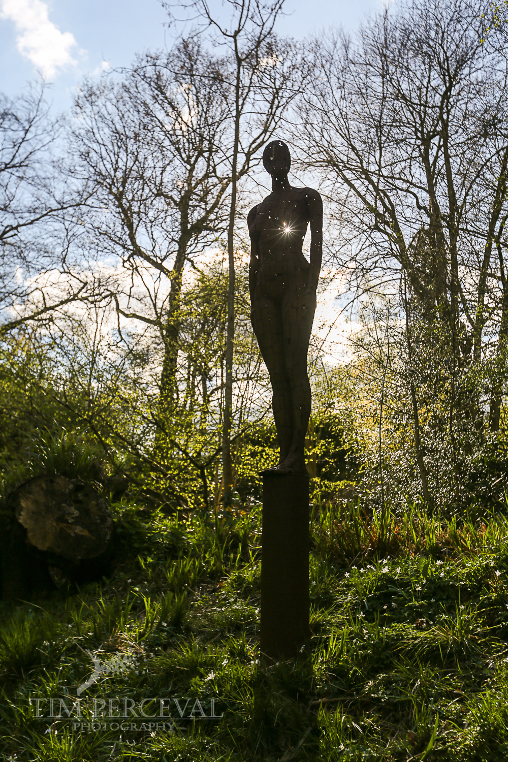 Hannah Peschar Sculpture Garden, Dorking, UK