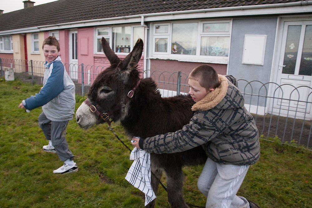A documentary photograph of two boys playing with a donkey in Moyross, Limerick, Ireland