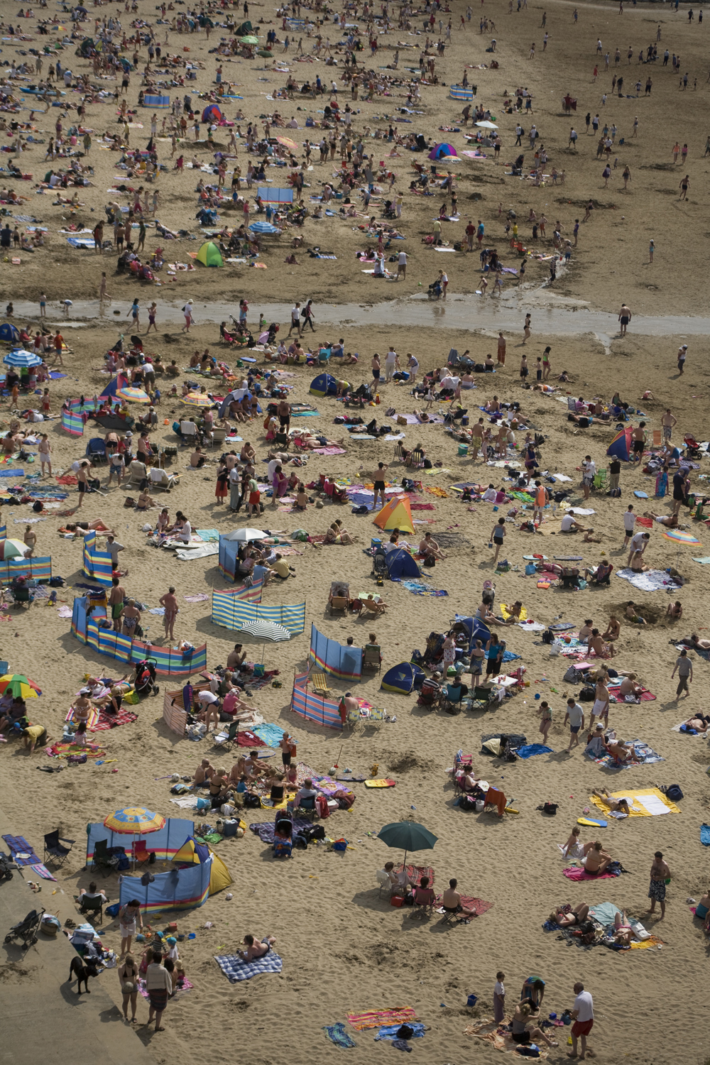 A documentary photograph of a crowded beach during a rare irish heat wave