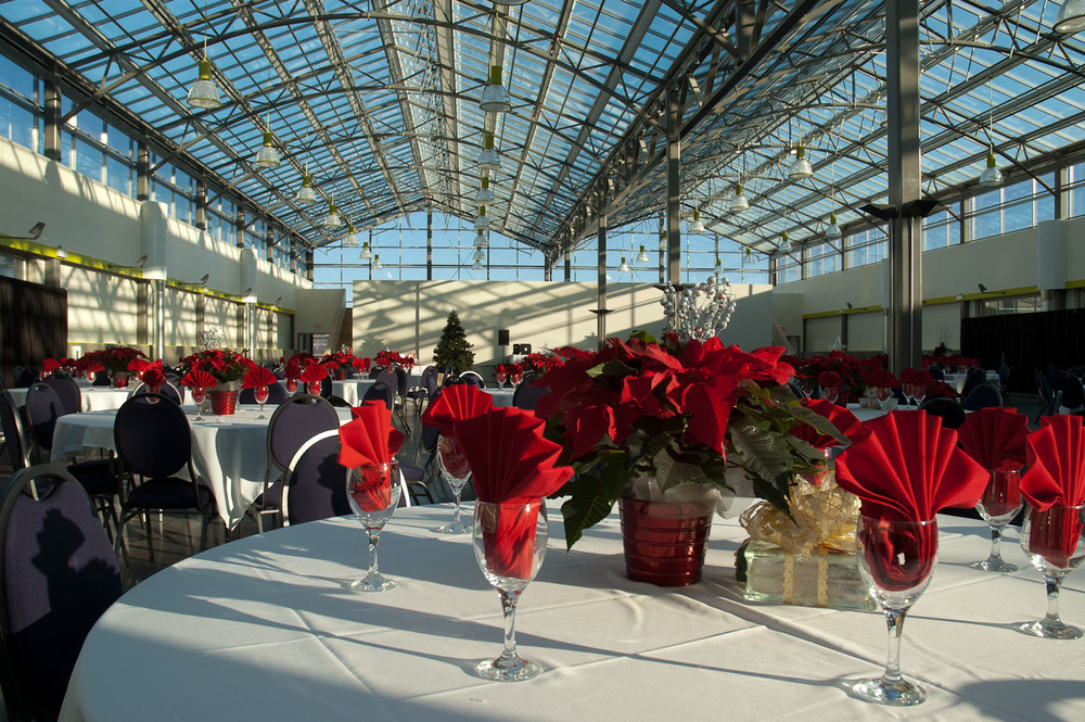Christmas, event space, daytime.jpg