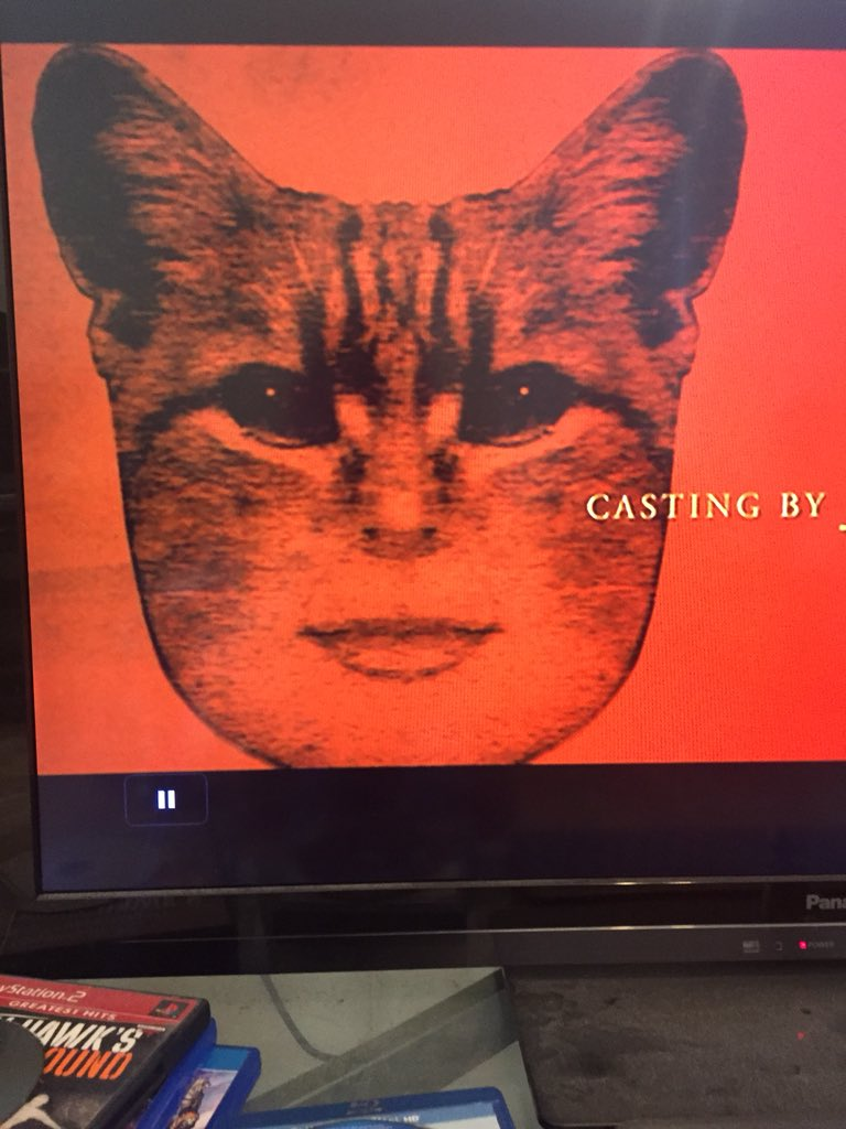 catwomanpic.jpg