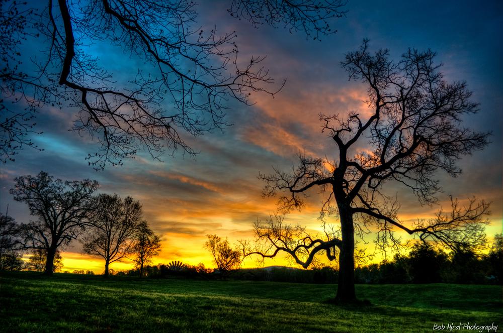 Mcintire Park, Charlottesville, Virginia